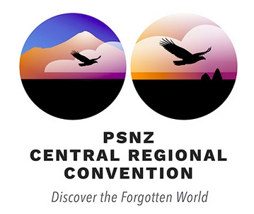 Central Convention