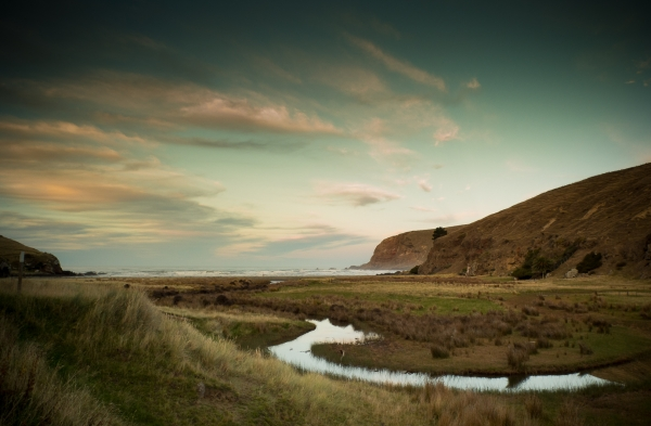 Raupo Bay with Brian Milner
