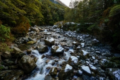 Gaynor Hurst: Stream at Arthurs Pass