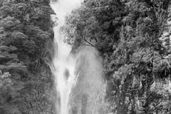 Caro Collins: Waterfall