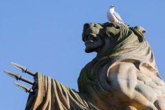 Judy Ashton: Gull lookout