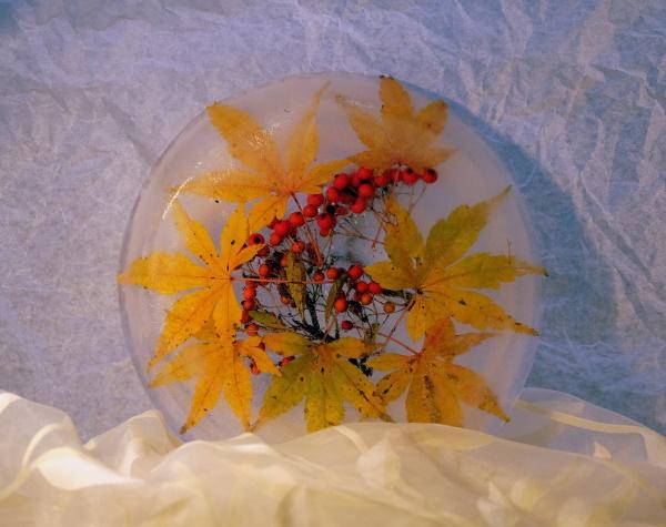Sandra Dermott: 3D Ice platter