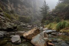James Thompson: Woolshed Creek