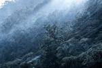 William Patino: Fiordland Storm