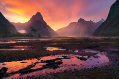 William Patino: Milford Sound Sunset