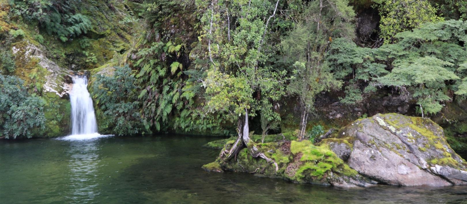South Fiord, Te Anau
