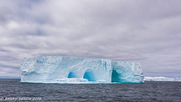 Icebergs in Weddell Sea