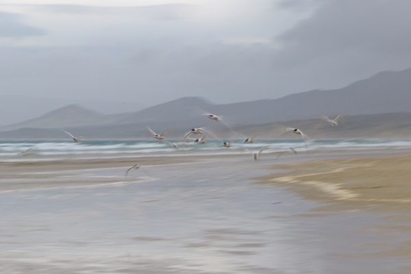 Impressions (01) Coastal scene