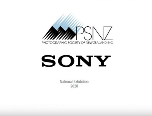 PSNZ Sony National Exhibition