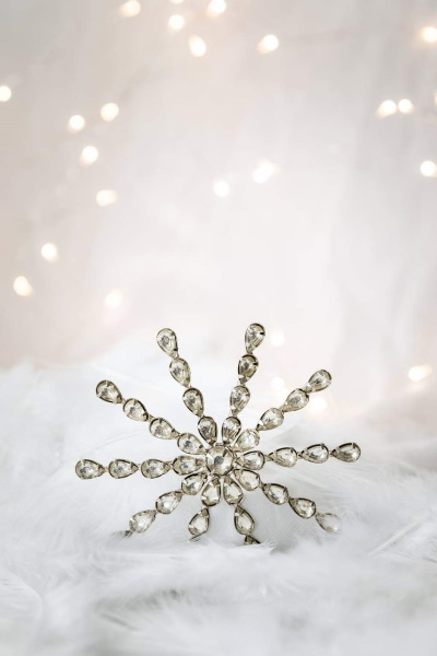 Stacey Snowflake