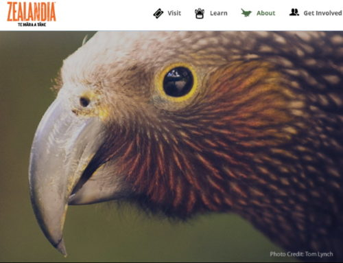 Register for Zealandia Nature Sanctuary