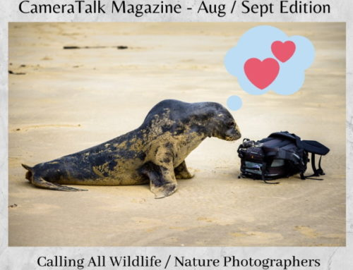 Wildlife and Nature Photography for Camera Talk